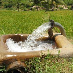 روابط آب و خاک و گياه