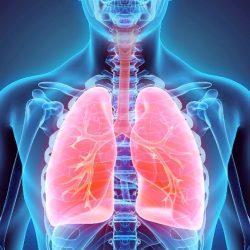 علایم بیماریهای ریه امروزه ، هوای تازه و پاک به یک منبع کمیاب تبدیل شده ، به این معنی که بیش از هر زمان دیگری ، ما باید به ریه هایمان توجه کنیم و به علائمی که آنها می دهند توجه کنیم. به نظر می رسد که برخی از این علائم بسیار ساده هستند و می توان به راحتی از آنها رد شد ، اما اگر توجه کنید ، ممکن است زندگی شما را نجات دهد.
