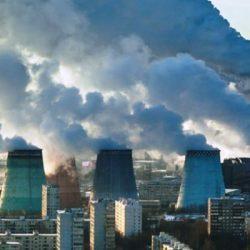 تاثیر گیاهان بر آلودگی هوا