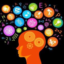 نظریه های مختلف درباره هوش