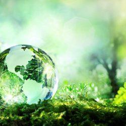 بهداشت محیط زیست