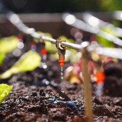 انواع سیستم آبیاری باغ